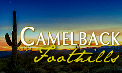 Camelback Foothills Homes for Sale Paradise Valley Arizona