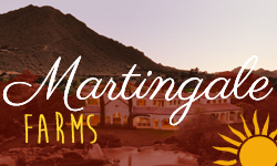 Martingale Farms Homes for Sale Paradise Valley Arizona