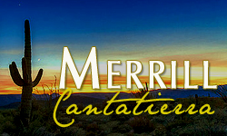 Merrill Cantatierra Homes for Sale Paradise Valley Arizona