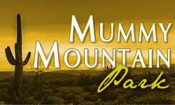 Mummy Mountain Park Homes for Sale Paradise Valley Arizona