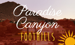 Paradise Canyon Foothills Homes for Sale Paradise Valley Arizona