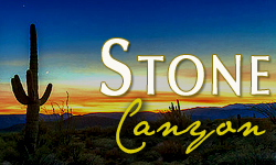 Stone Canyon Homes for Sale Paradise Valley Arizona