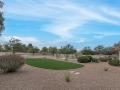 Backyard-ArtificialTurf
