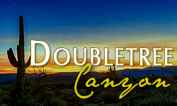 Doubletree Canyon Homes for Sale Paradise Valley Arizona