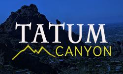 Tatum Canyon Homes for Sale Paradise Valley Arizona