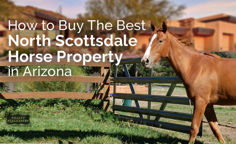 North Scottsdale horse property